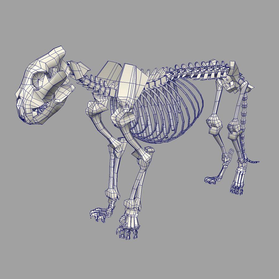 Lion Skeleton (RIG) royalty-free 3d model - Preview no. 5