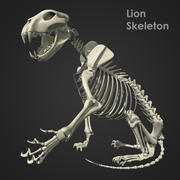 Lion Skeleton (RIG) 3d model