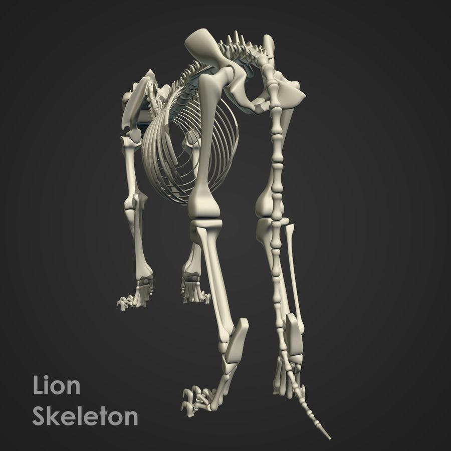 Lion Skeleton (RIG) royalty-free 3d model - Preview no. 15