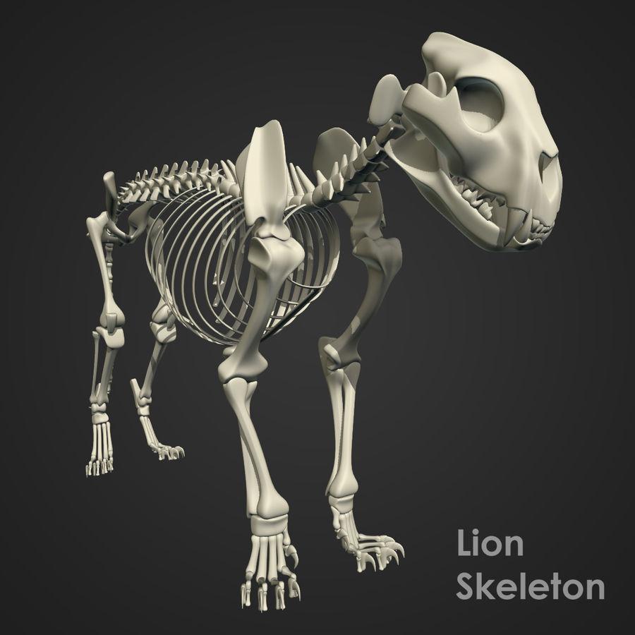 Lion Skeleton (RIG) royalty-free 3d model - Preview no. 13
