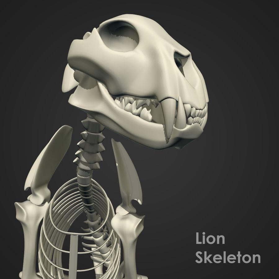 Lion Skeleton (RIG) royalty-free 3d model - Preview no. 6