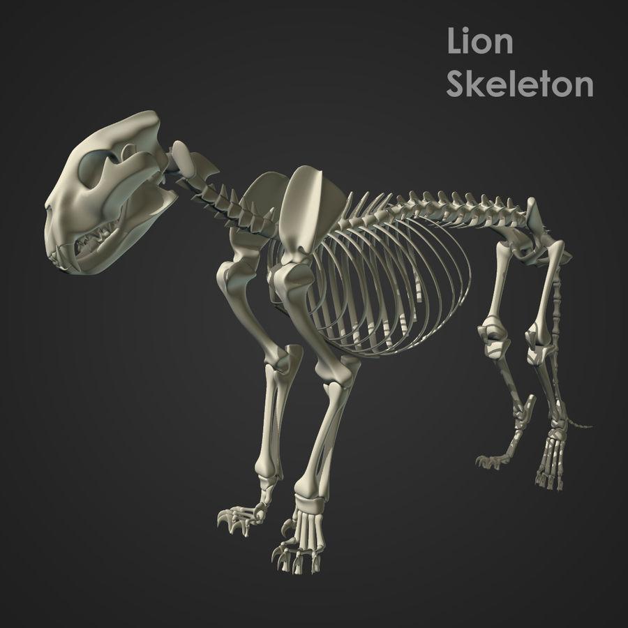 Lion Skeleton (RIG) royalty-free 3d model - Preview no. 1