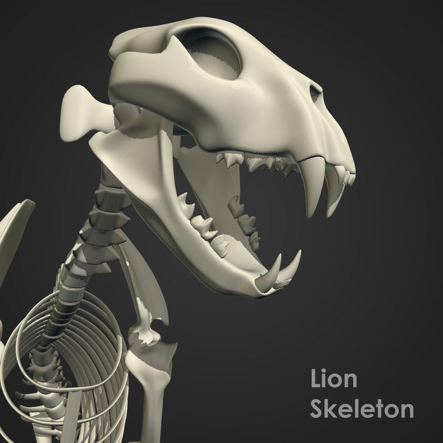 Lion Skeleton (RIG) royalty-free 3d model - Preview no. 7