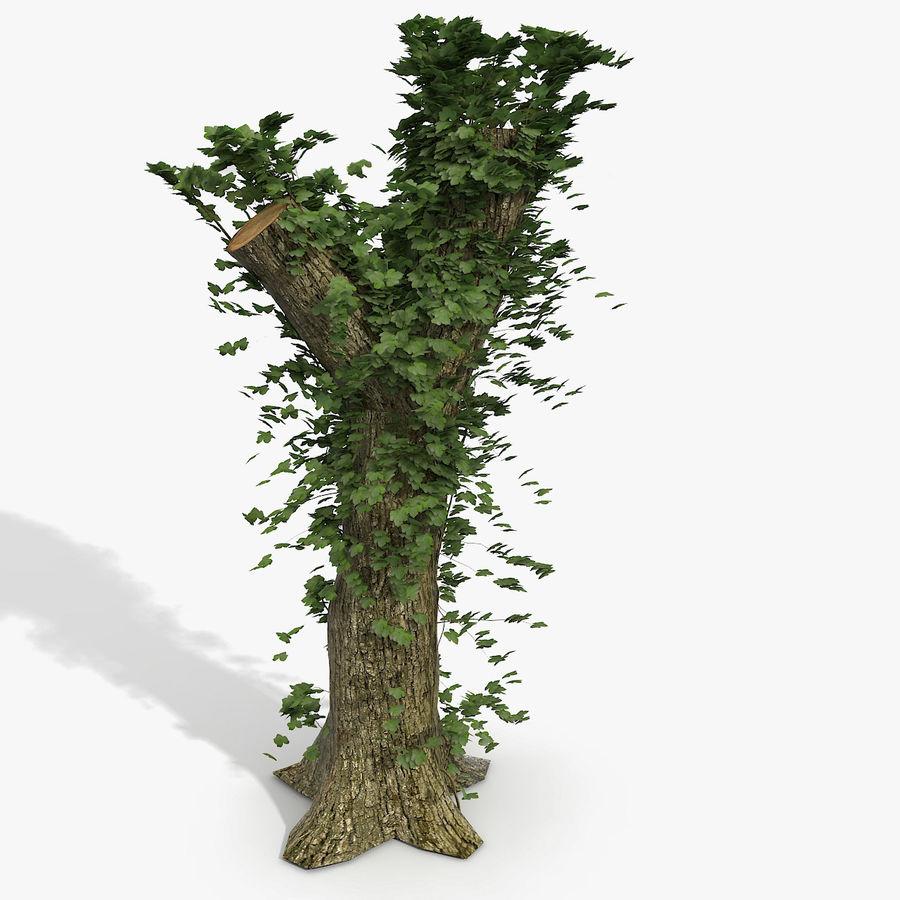 Coto de árvore coberto de Ivy royalty-free 3d model - Preview no. 1
