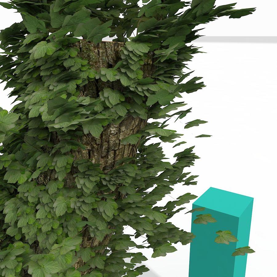 Coto de árvore coberto de Ivy royalty-free 3d model - Preview no. 4