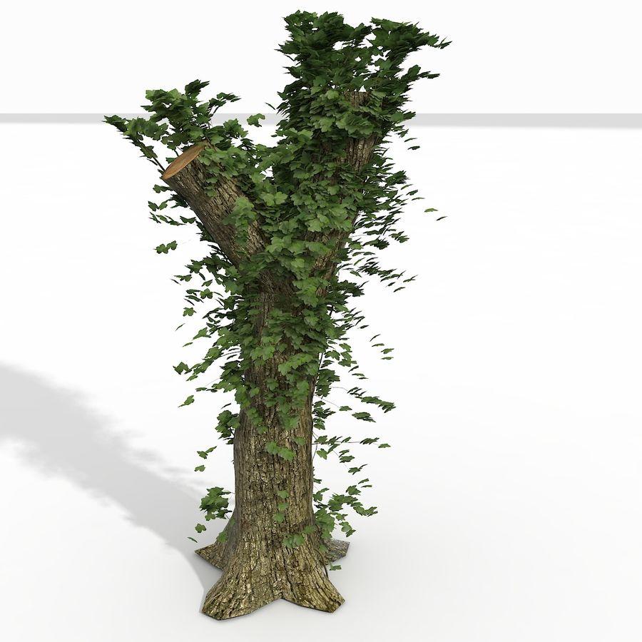 Coto de árvore coberto de Ivy royalty-free 3d model - Preview no. 2