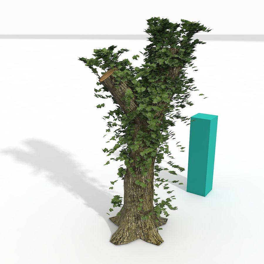 Coto de árvore coberto de Ivy royalty-free 3d model - Preview no. 3