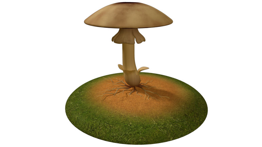 Mycelium royalty-free 3d model - Preview no. 2