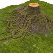 Raízes Com Stump Tree Stump 3d model