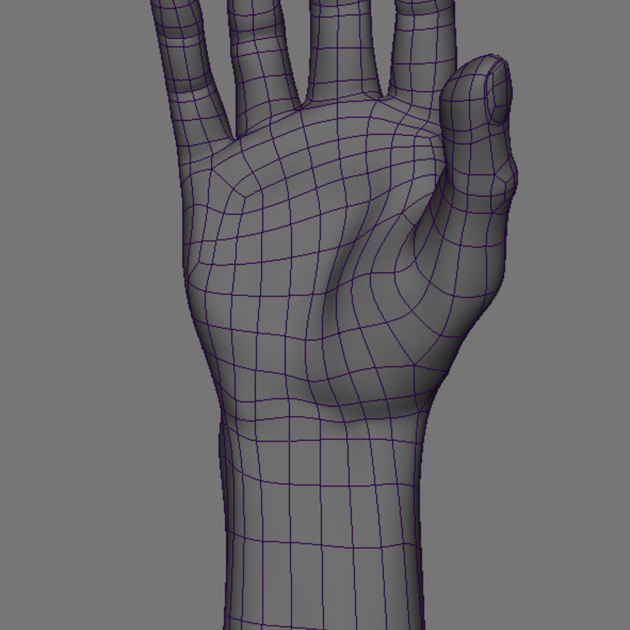 Реалистичная Rigged Hand royalty-free 3d model - Preview no. 4