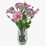 Eustoma Colorful 01 3d model