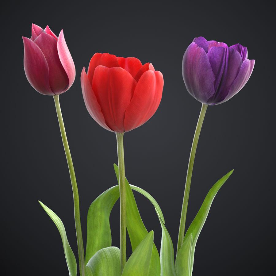 Fleurs de tulipe royalty-free 3d model - Preview no. 1