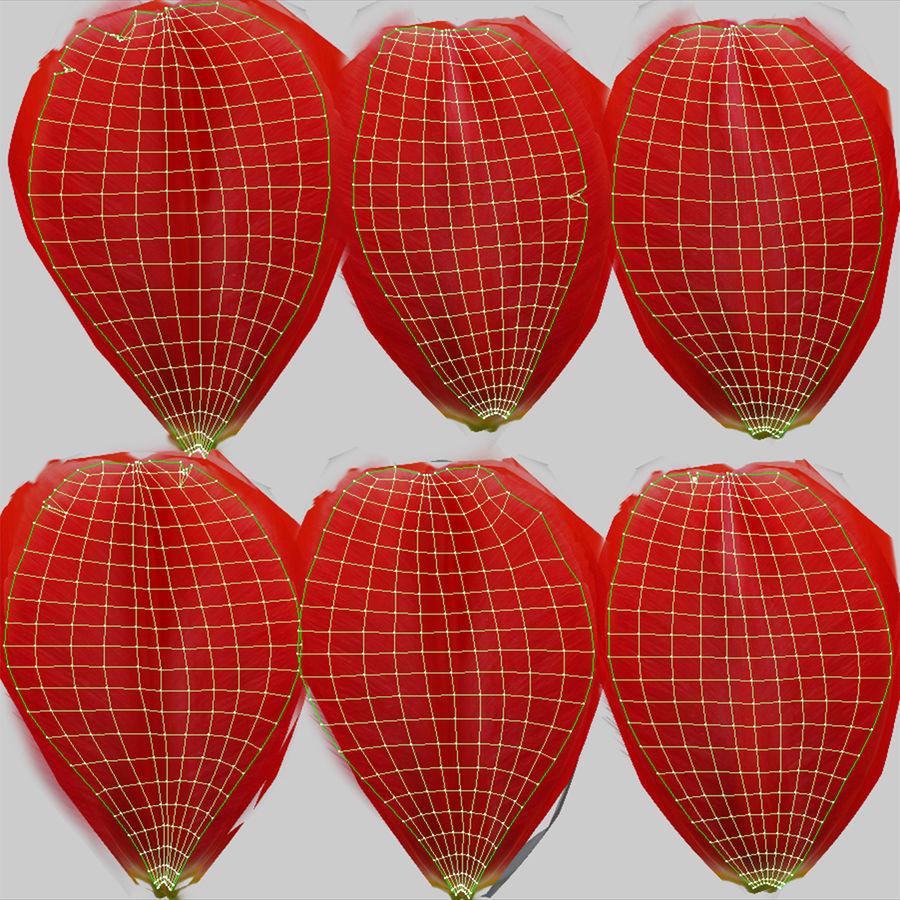 Fleurs de tulipe royalty-free 3d model - Preview no. 11