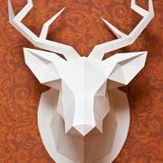 Testa di cervo a basso contenuto di poli 3d model