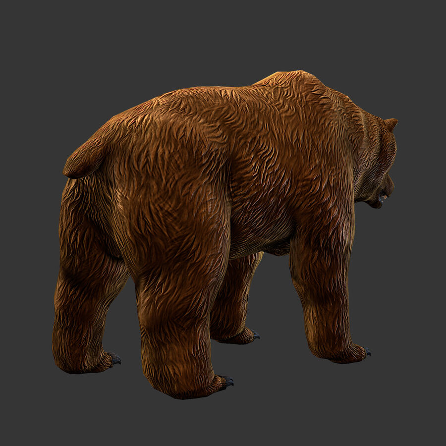Niedźwiedź grizzly royalty-free 3d model - Preview no. 5