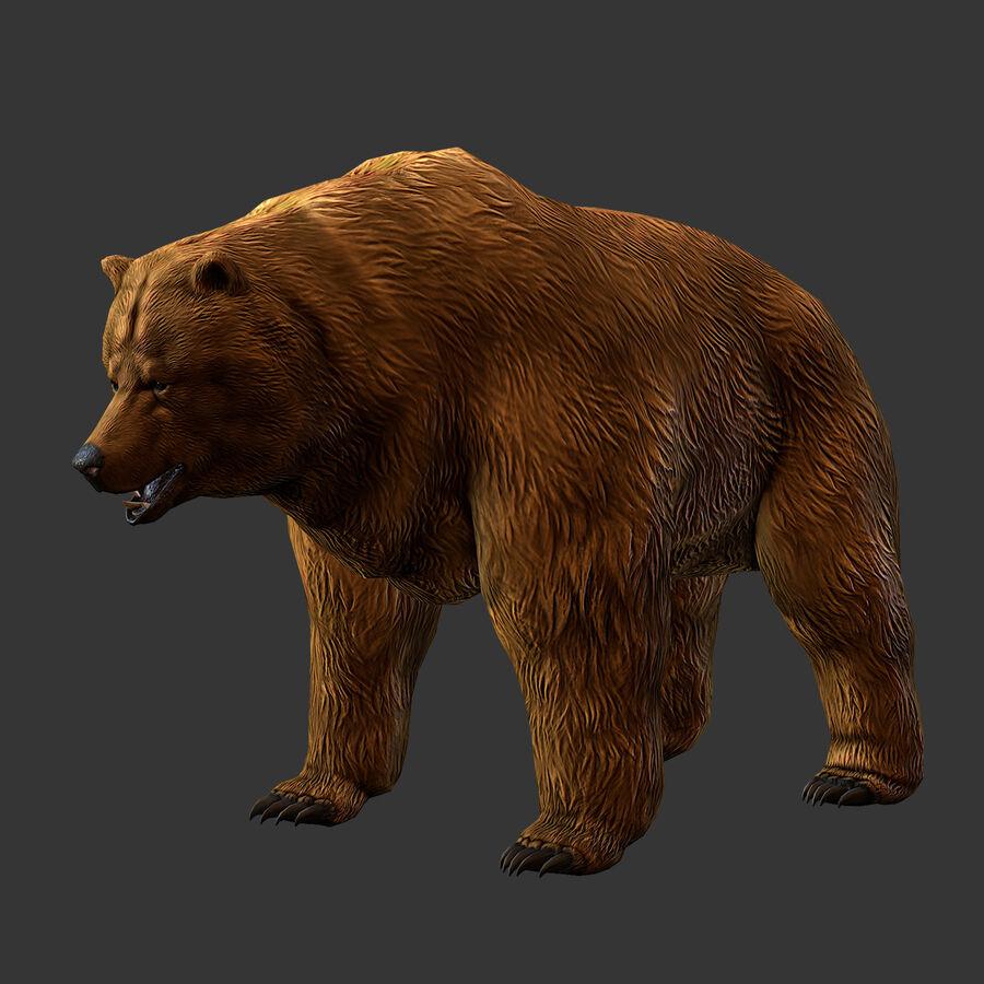 Niedźwiedź grizzly royalty-free 3d model - Preview no. 4