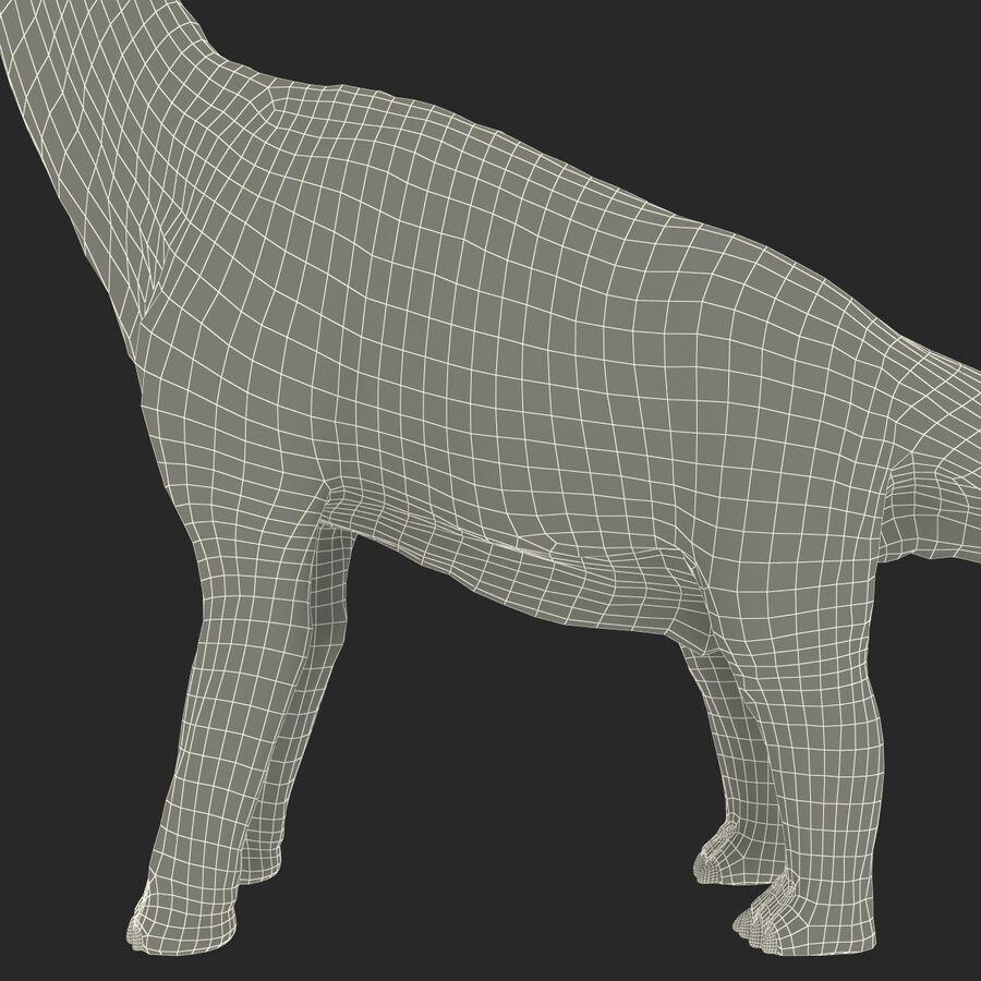 Brachiosaurus royalty-free 3d model - Preview no. 24