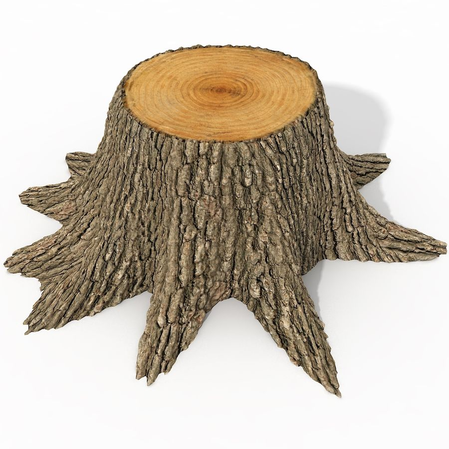 Tree Stump royalty-free 3d model - Preview no. 2