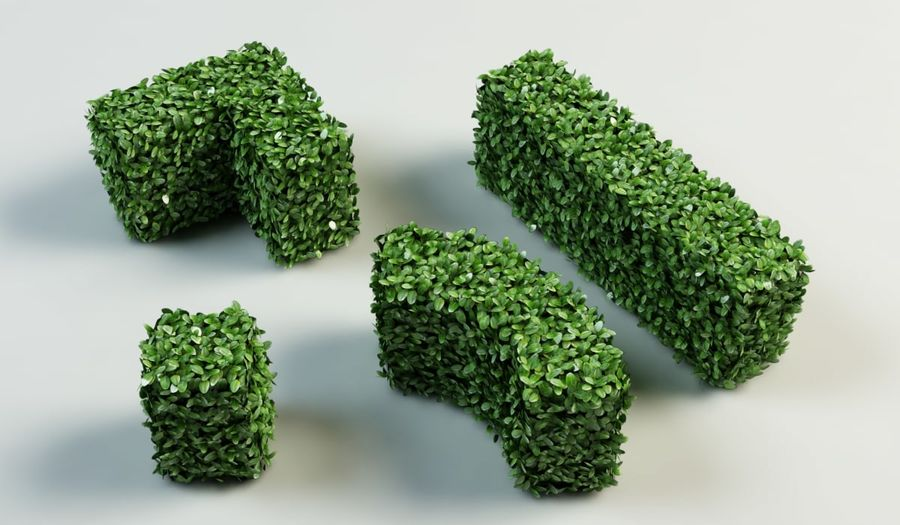 hedge topiary bush royalty-free 3d model - Preview no. 1