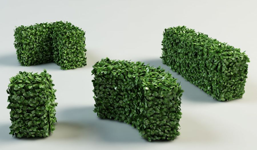 hedge topiary bush royalty-free 3d model - Preview no. 2