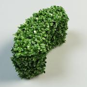 arc hedge topiary bush 3d model