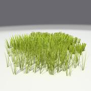 çimen 3d model