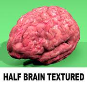 Half Brain Textured 2 3d model