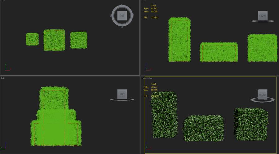 boxwood bush topiary royalty-free 3d model - Preview no. 5