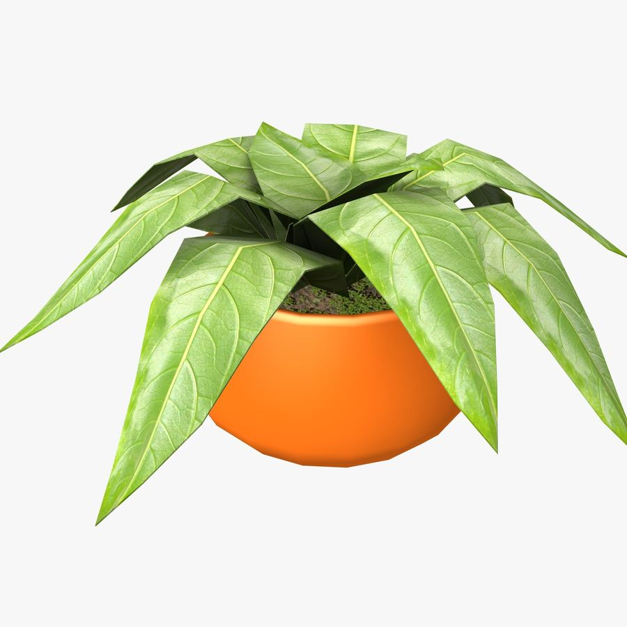 Pot Plant royalty-free 3d model - Preview no. 5
