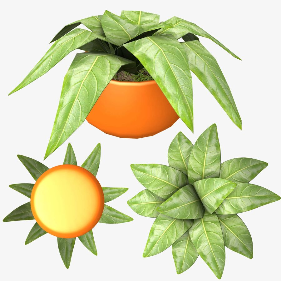 Pot Plant royalty-free 3d model - Preview no. 6