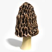 Morel Mushroom 3d model