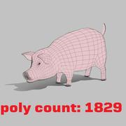 猪 3d model