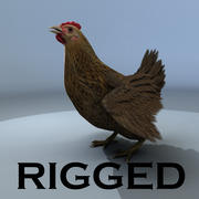 Chicken RIGGED 3d model
