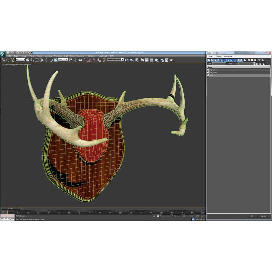 Mounted Deer Antlers royalty-free 3d model - Preview no. 22