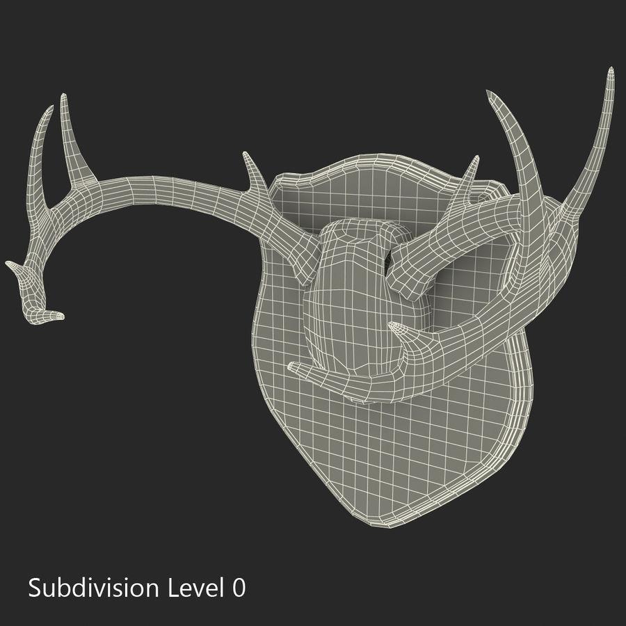Mounted Deer Antlers royalty-free 3d model - Preview no. 1