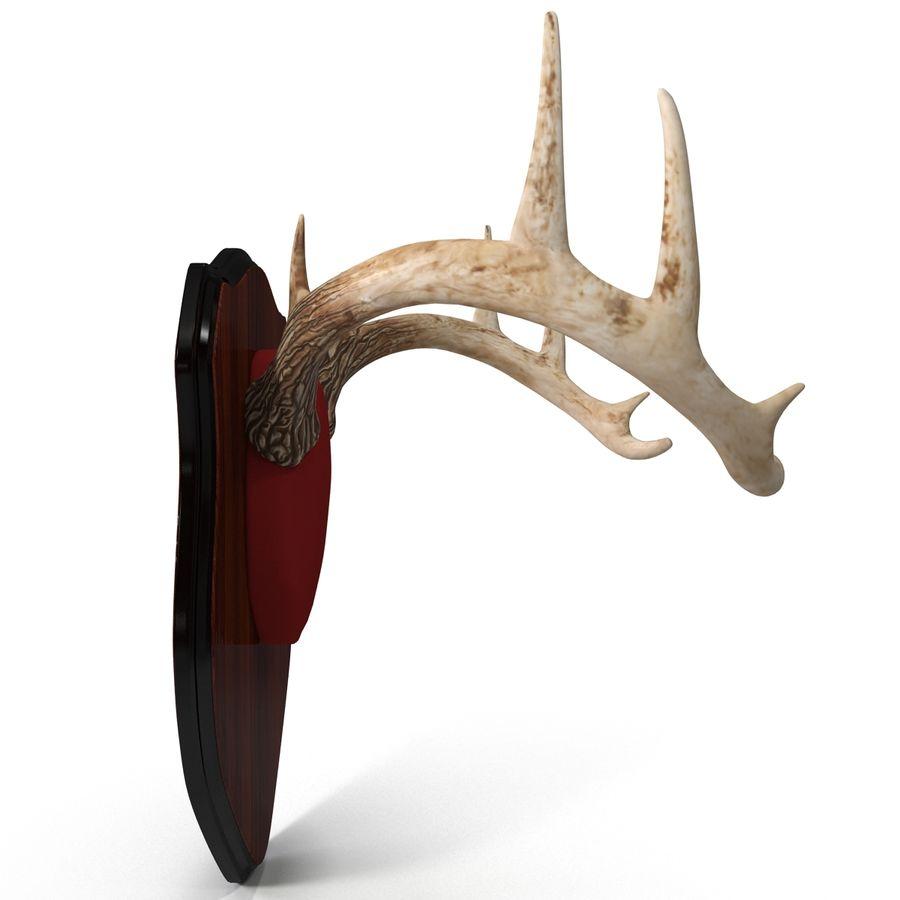 Mounted Deer Antlers royalty-free 3d model - Preview no. 9