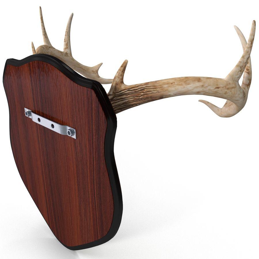 Mounted Deer Antlers royalty-free 3d model - Preview no. 5