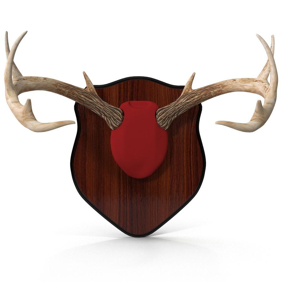 Mounted Deer Antlers royalty-free 3d model - Preview no. 6
