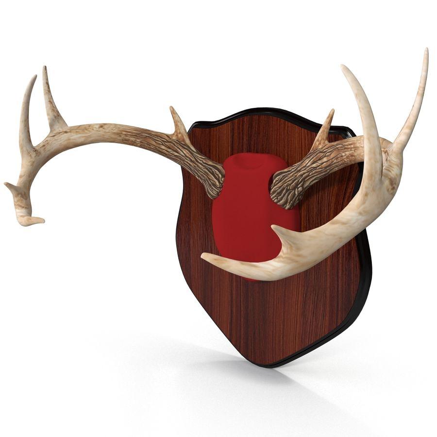 Mounted Deer Antlers royalty-free 3d model - Preview no. 4