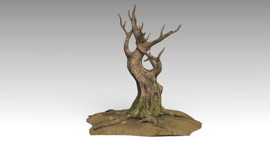 Tree Grass royalty-free 3d model - Preview no. 4