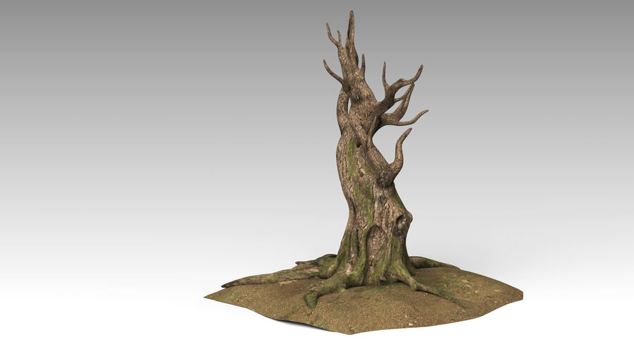 Tree Grass royalty-free 3d model - Preview no. 5