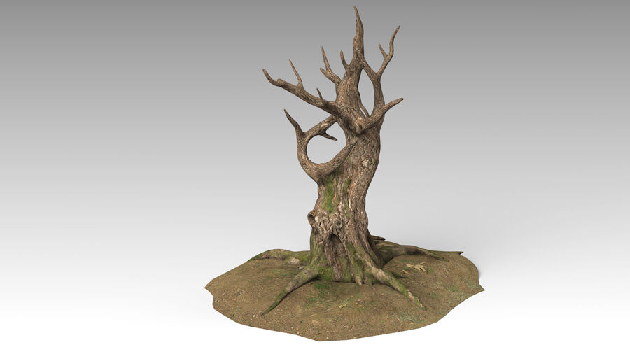 Tree Grass royalty-free 3d model - Preview no. 6