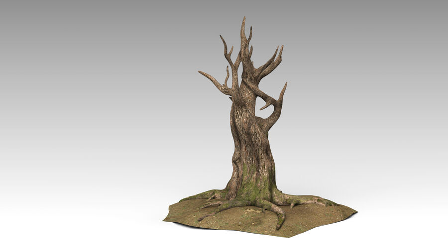 Tree Grass royalty-free 3d model - Preview no. 3