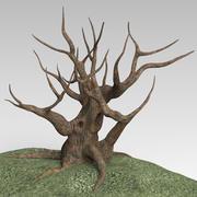 Трава дерева 3d model