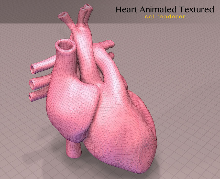 Heart Anatomy Animated royalty-free 3d model - Preview no. 13