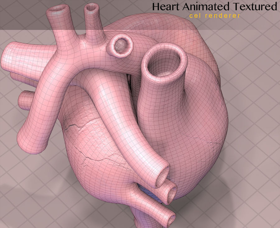 Heart Anatomy Animated royalty-free 3d model - Preview no. 12
