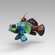 Mandarinfische 3d model