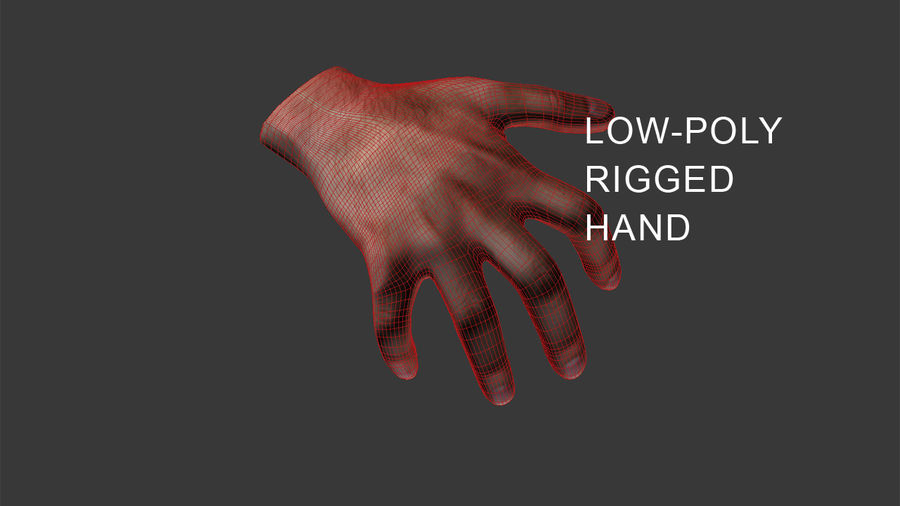 Hand-Rigged royalty-free 3d model - Preview no. 8