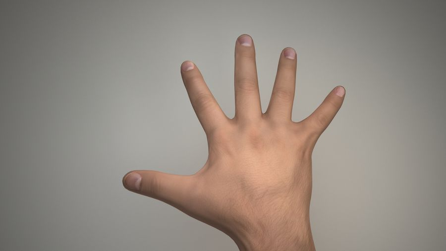 Hand-Rigged royalty-free 3d model - Preview no. 1