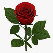 Rose Branch Red 02 modelo 3d